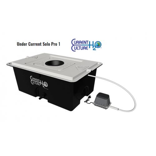 CCh2O UC Pro1-500×500