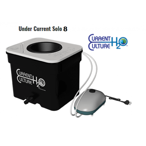 CCh2O UC Solo8-500×500