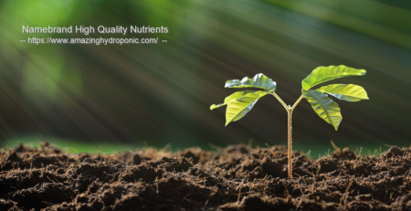 advanced nutrients for soil