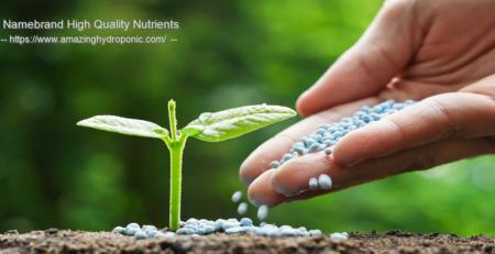 natural fertilizer online in canada